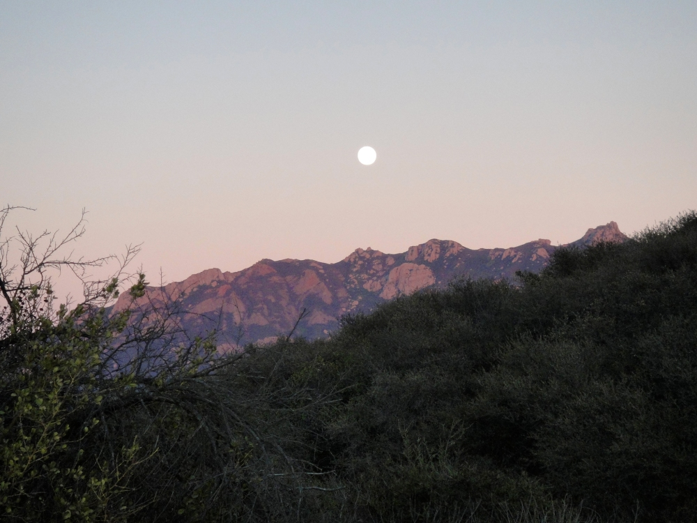 Sunset Moonrise – Oct 28 - Nov 3 (2/5)